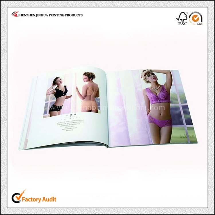 Customized Professional High Quality Printing Pamphlet