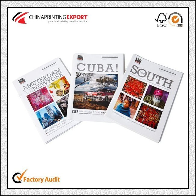 China High Quality Business Brochure Printing Low Cost