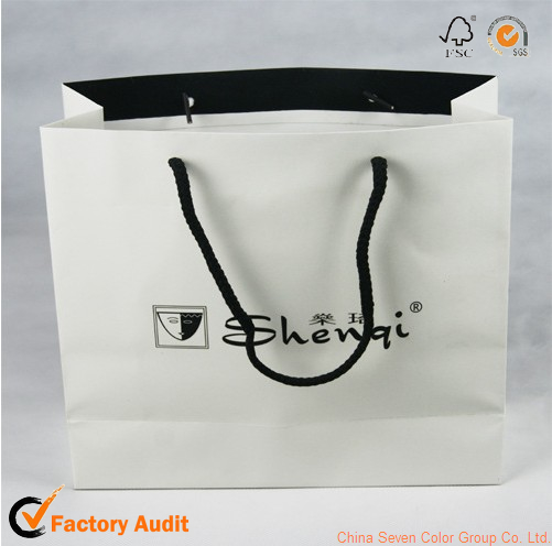 Luxury Art Paper Bag